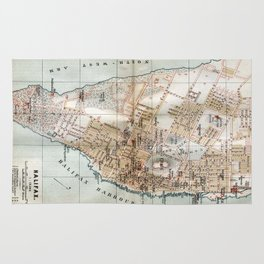Vintage Map of Halifax Nova Scotia (1890) Rug