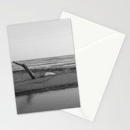 Nature reserve, Sicily, black white Stationery Cards
