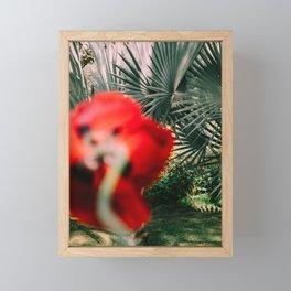 Poppy on garden Framed Mini Art Print