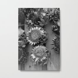 Artichokes, black-and-white photography Metal Print
