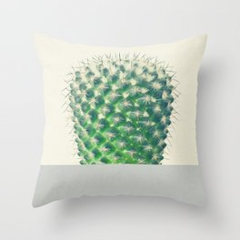 Cactus Dip Throw Pillow