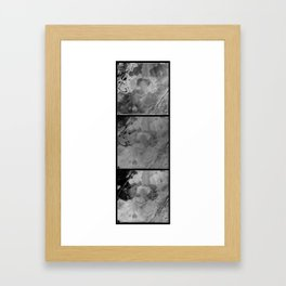 Carapace Three Framed Art Print