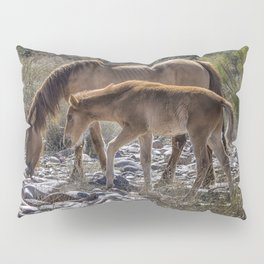 Salt River Mare and Her Colt, No. 2 Pillow Sham