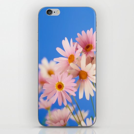 Soft Pink Daisies iPhone & iPod Skin