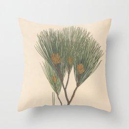 Botanical Pine Throw Pillow