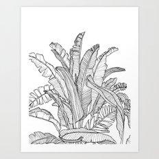 Palm Beach - Black and White Art Print