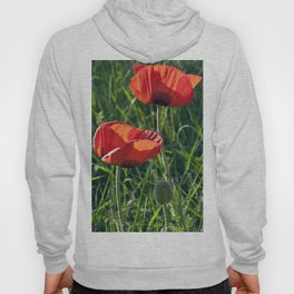 Red Poppies on the summer meadow Hoody
