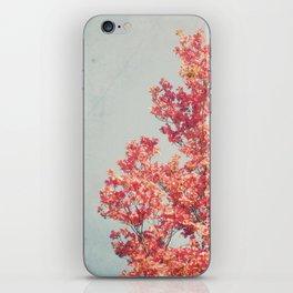 Cheerful Spring iPhone Skin