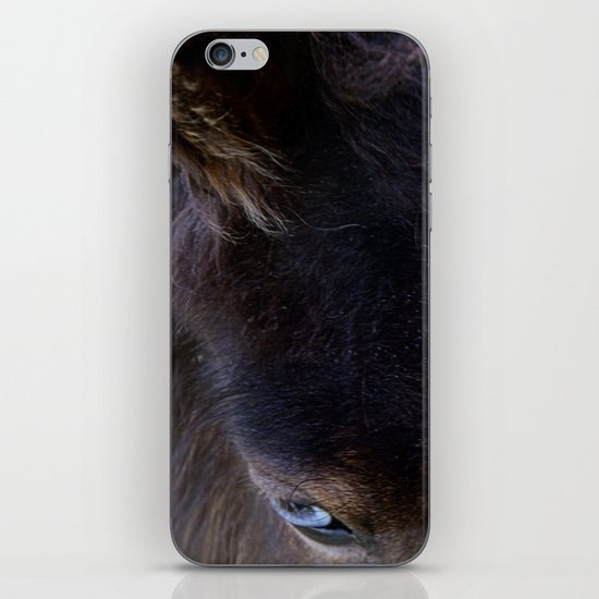 Old Blue Eyes iPhone & iPod Skin