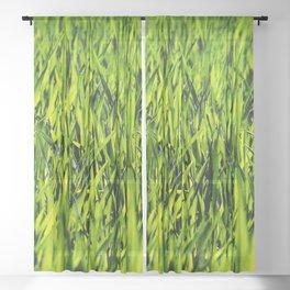 Green Grass Sheer Curtain