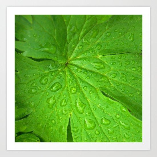 green leaf II Art Print