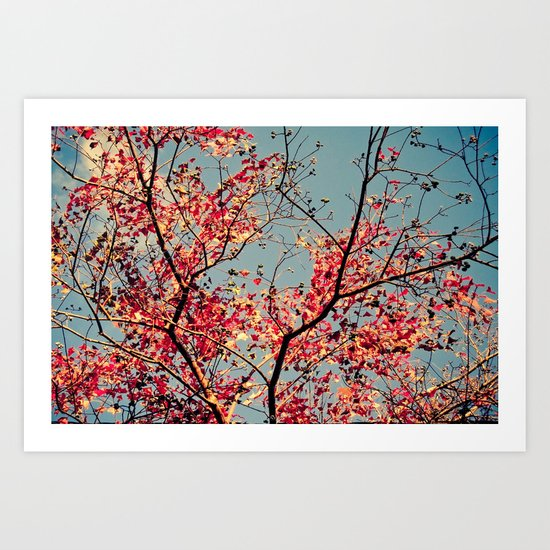 Autumn Branch & Leaves Art Print