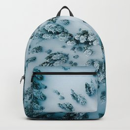 Evergreen Forest Winter (Color) Backpack