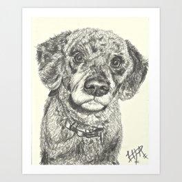 Curly dog Art Print