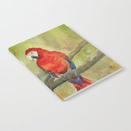Scarlet Macaw Parrots Notebook