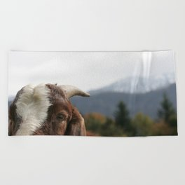 Look who's complaining, funny goat photo Beach Towel