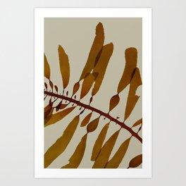 medium kelp Art Print