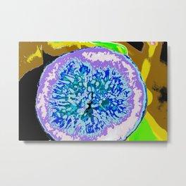 fig tree shadow Metal Print