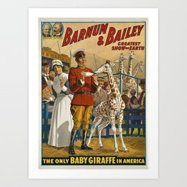 19th Century Barnum & Bailey Circus The only baby giraffe in America Vintage Poster Art Print
