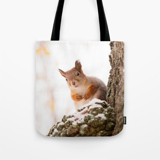 Squirrel in first snow Tote Bag