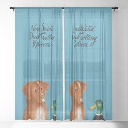 Nova Scotia Duck Trolling Retriever (Blue) Sheer Curtain