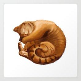 The Big Cat Sleeps into a Ball Art Print