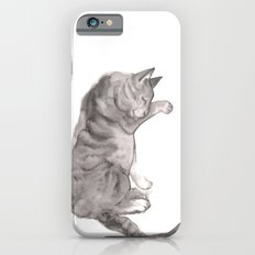 Tabby Cat Slim Case iPhone 6s