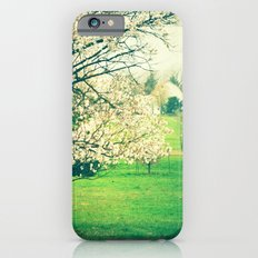 Meet Me Under the Old Apple Tree iPhone 6s Slim Case