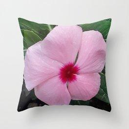 Simplicity in a Pink Flower Throw Pillow