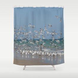 A Flock of Seagulls Shower Curtain