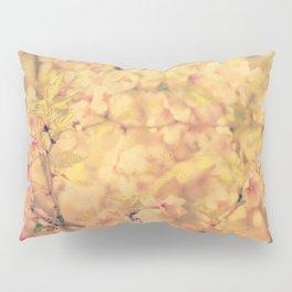 #240 Pillow Sham