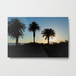 Sunset and trees Metal Print