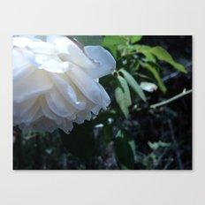 Flowers #17 Canvas Print