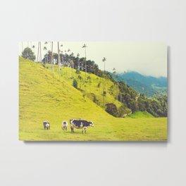 Beautiful Bucolic Countryside in Colombia Fine Art Print Metal Print