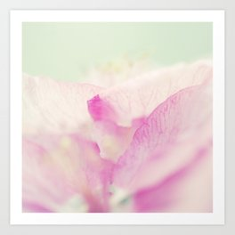 Gentle Wispers Art Print