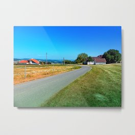 Another country road in summertime Metal Print