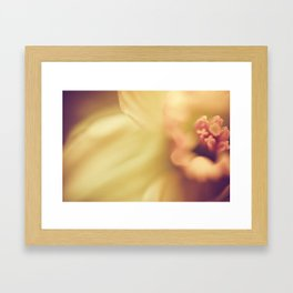 daffodil heart Framed Art Print
