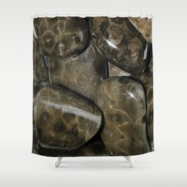 Fossilized Coral Shower Curtain