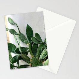 Cactus Italia Stationery Cards
