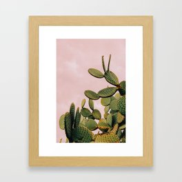 Cactus on Pink Sky Framed Art Print