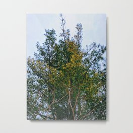 High up there Metal Print
