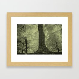 NATURE I Framed Art Print