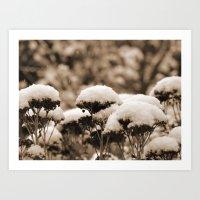 paysage de neige Art Print