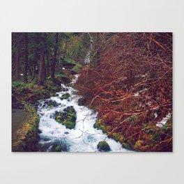 Wahkeena Falls - OR Canvas Print