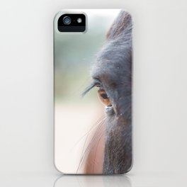 The mirror of the soul iPhone Case