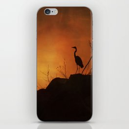 Night silhouette iPhone Skin