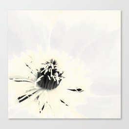 Bright White Canvas Print