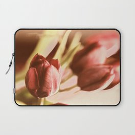 Once upon ... Laptop Sleeve