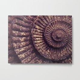 Ammonite swirl Metal Print