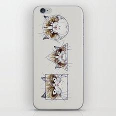 Simple Shape of Grumpy iPhone & iPod Skin